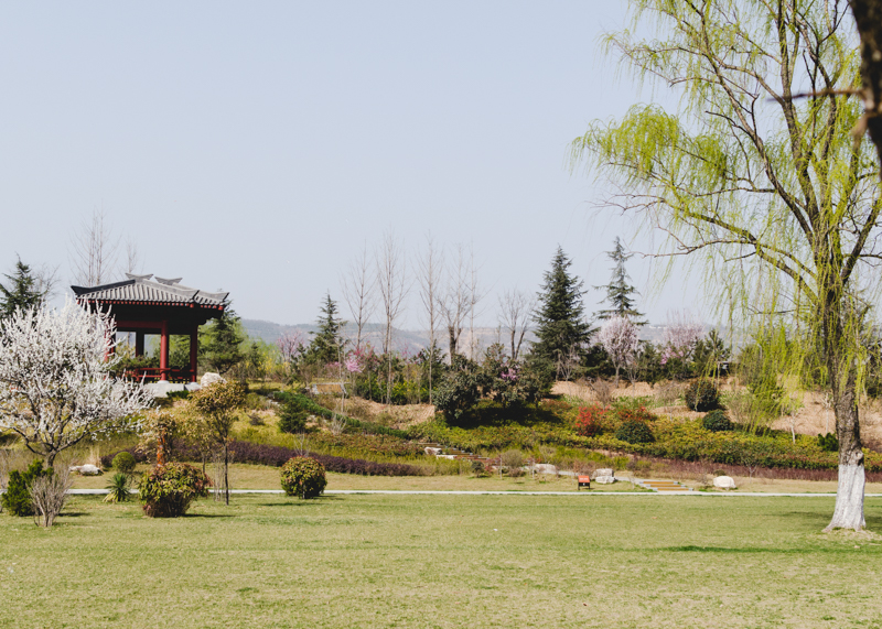 Springtime in Shaanxi_